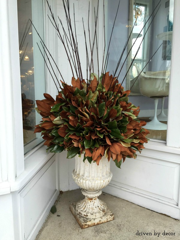 Decorating for the Season with Magnolia Leaves   Driven by Decor Magnolia leaves in urns as holiday decorations