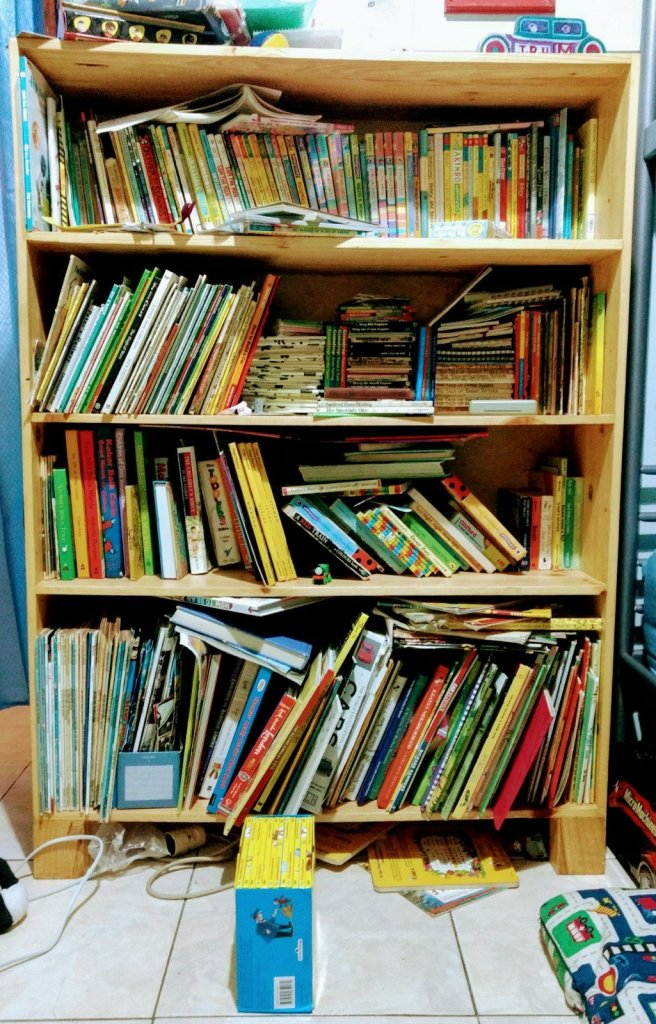 bookcase with 519 books