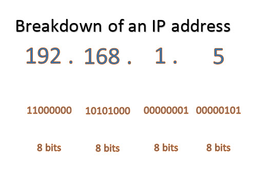 Bit representation of an IP address