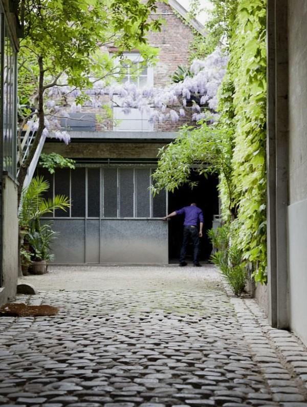 driveway courtyard climbing plants