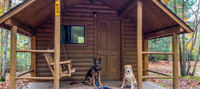 What It's Like Traveling Fulltime in a RV with Large Dogs