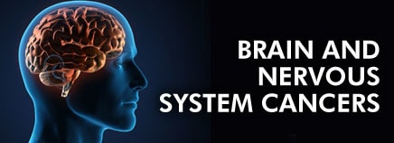 Brain and Nervous System Cancers
