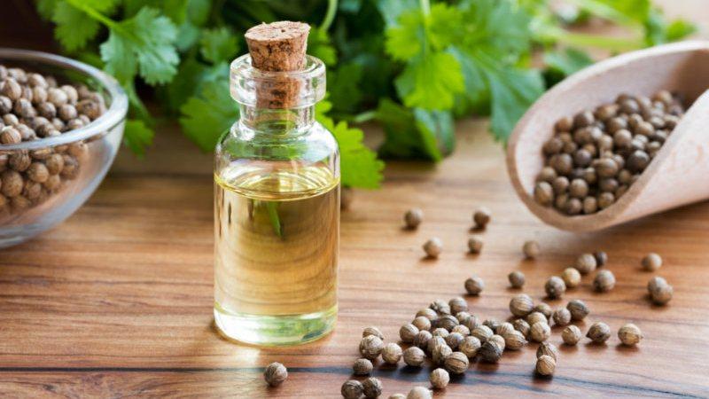 Surprising Health Benefits of Coriander Oil