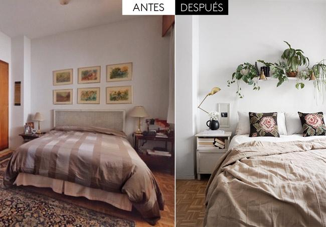 Un dormitorio decorado con plantas