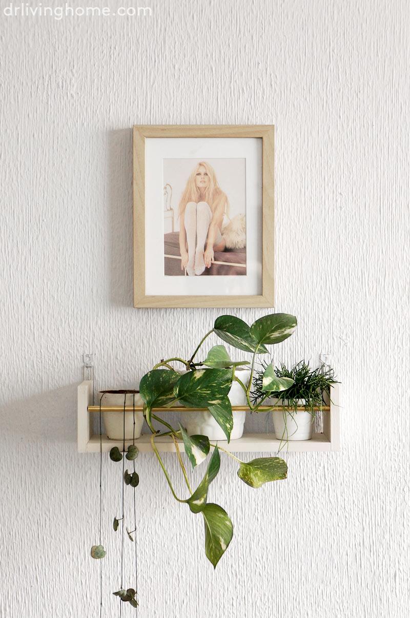 Diy estante para decorar con plantas