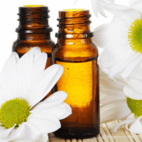 roman-chamomile-essential-oil-featured-image