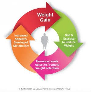 How Dieting can Disrupt your Hormones