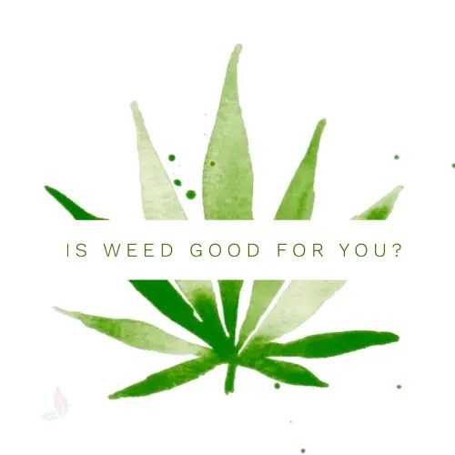 Is your Need for Weed Good for your Body?