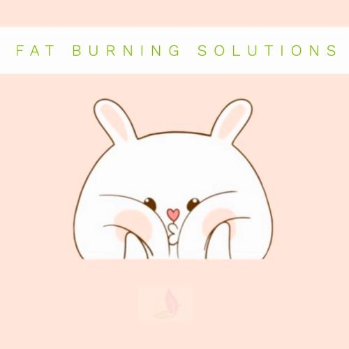 Burning Fat the Natural Way