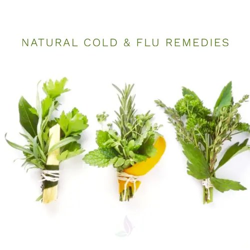 Natural Flu Prevention