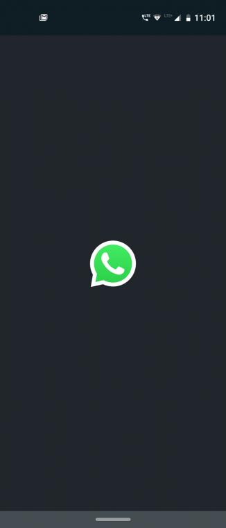 Whatsapp startup screen