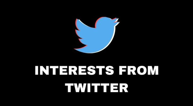 Twitter Interessen