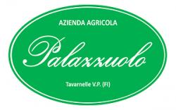 palazzuolo-e1516142748580 LAVORI