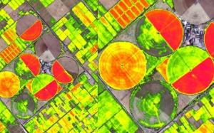cari-e1517523601219 Mappe multispettrali