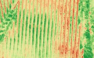 savi-e1517523277621 Mappe multispettrali