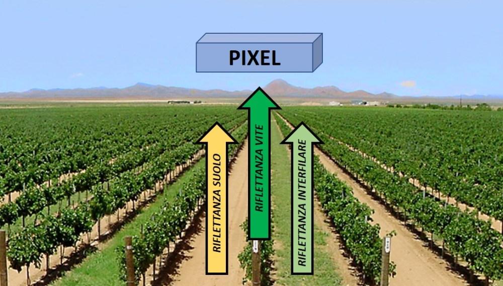 ndvi-pixel-effetto-suolo Indice NDVI in Viticoltura
