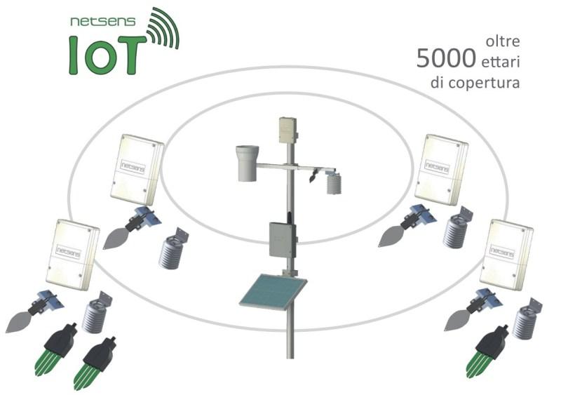 agrisense-iot-800x563 Sistemi Supporto Decisioni