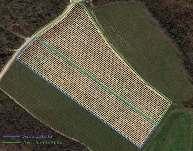 inama-vigneto-mappa-visibile BluAgri - Azienda Agricola Inama