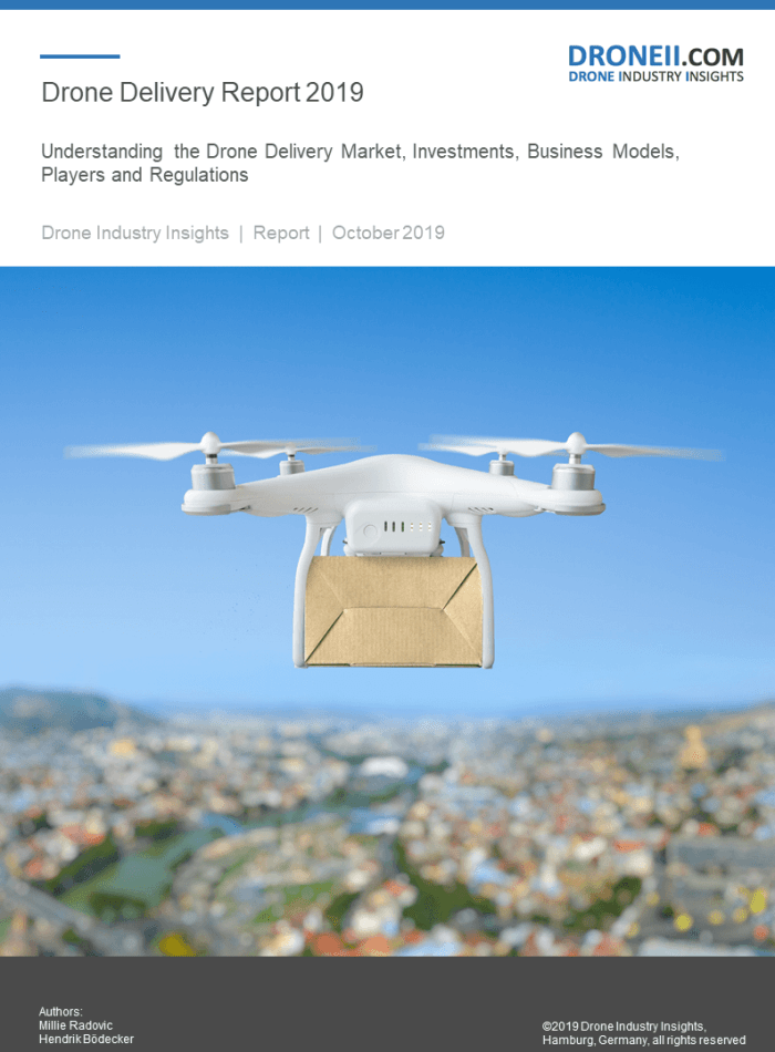 Drone Delivery Report Sample 1