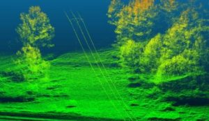 Lidar Sensor Images From UAV of Power Lines And Forest Canopy