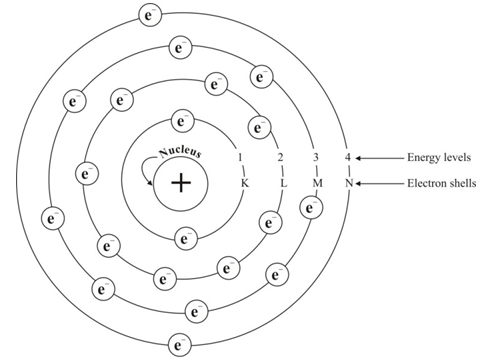 Structure of the atom complete set of questions dronstudy bohrs model of the atom nucleus is at the centre electrons revolve round the nucleus in fixed energy levels or electron shells ccuart Choice Image