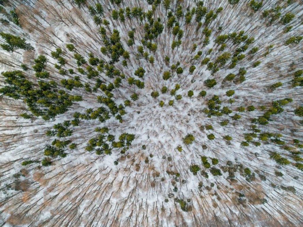 jak létat s dronem v zimě