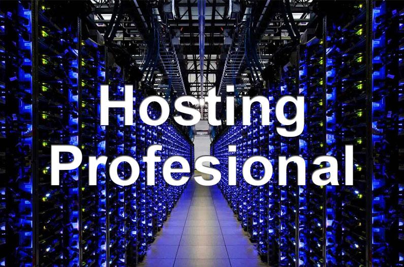Hosting para proyectos de páginas webs profesionales