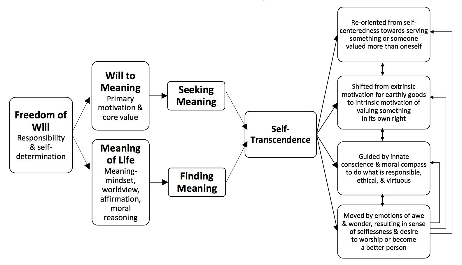 Four Defining Characteristics Of Self Transcendence