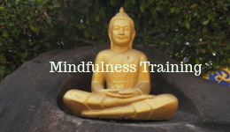 Sexual Mindfulness Book: Chs. 11& 12 Mindfulness Training