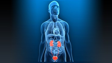 prostate cancer urology dr. david samadi md.