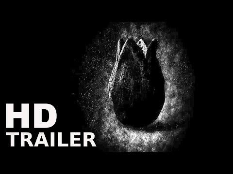 Dritter Kinobesuch 2017