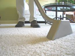Steam cleaner cleaning carpet