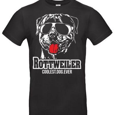 Cooler-Rottweiler