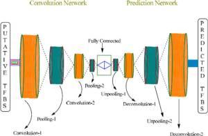 Figure 4. Graphical representation of a DeepSNR model