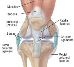 Knee Sprain Guide: Causes, Symptoms and Treatment Options