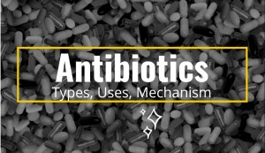 Antibiotics: Types, Uses, Mechanism