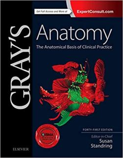 best anatomy book