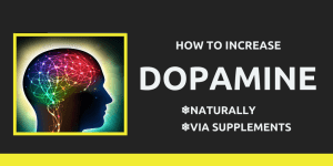 6 Best Supplements For Dopamine Deficiency