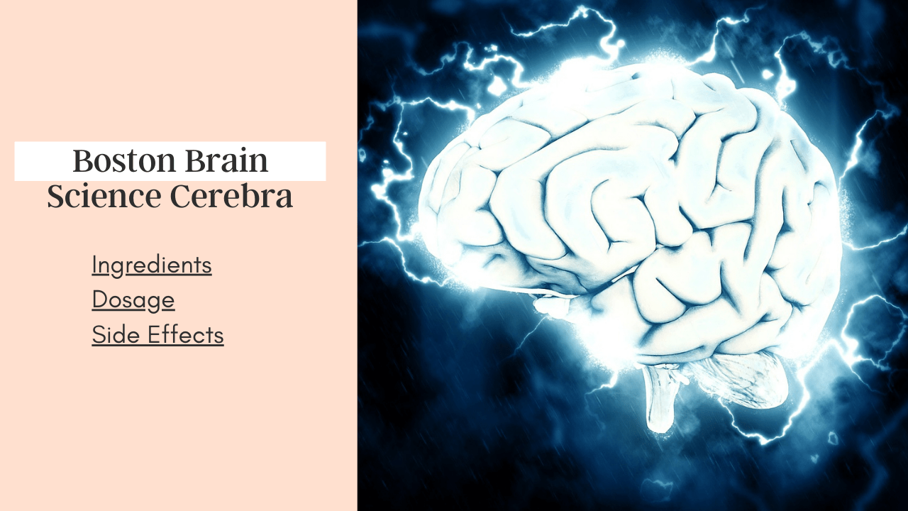 Boston Brain Science Cerebra Review