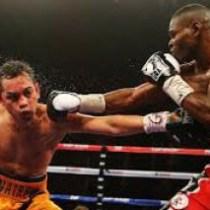 boxing2013