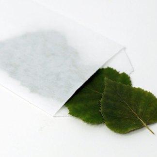 Birkenblätter in der Papiertüte