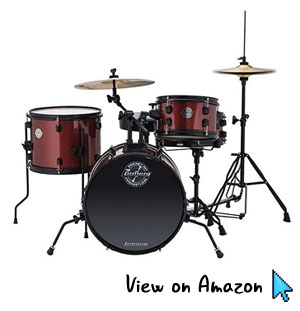 Ludwig Pocket Kit: Perfect For Clueless Parents Shopping for Kids Drums