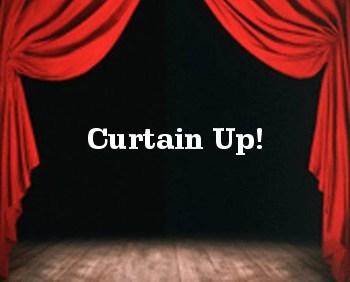 Simon Saltzman, Curtainup
