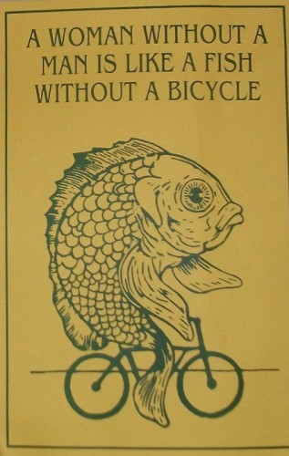 a woman without a man is like a fish without a bicycle 317x500 a woman without a man is like a fish without a bicycle