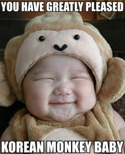 you have greatly pleased korean monkey baby
