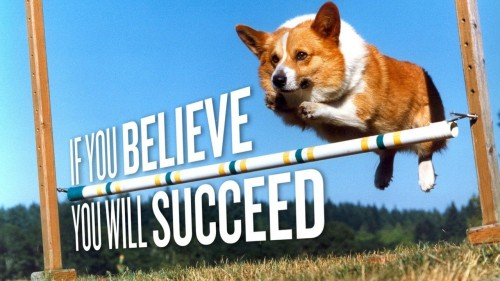 if you believe you will succeed 500x281 if you believe you will succeed