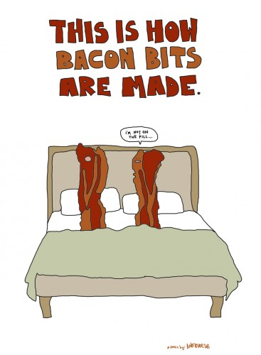 this is how bacon bits are made 367x500 this is how bacon bits are made
