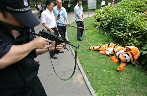 tiger shooters