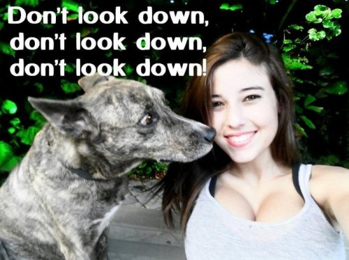 dont look down 500x373 dont look down