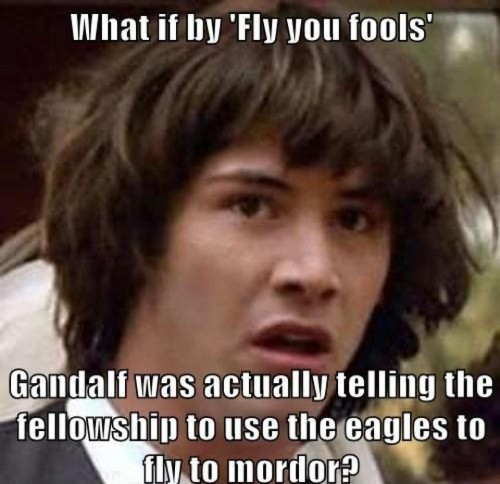 what if by fly you fools 500x484 what if by fly you fools